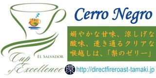 CerroNegro.png