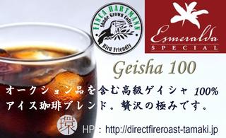 Geisha100.png