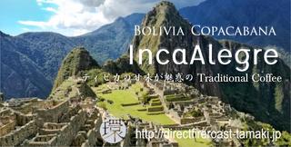 BoliviaIncaAlegre.png