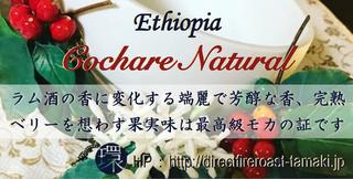 CochareNatural.png