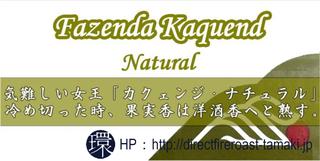 KaquendNatural.png