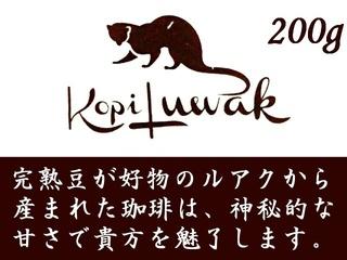 KopiLuwak_2018.jpg