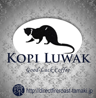 KopiLuwak_2019.png